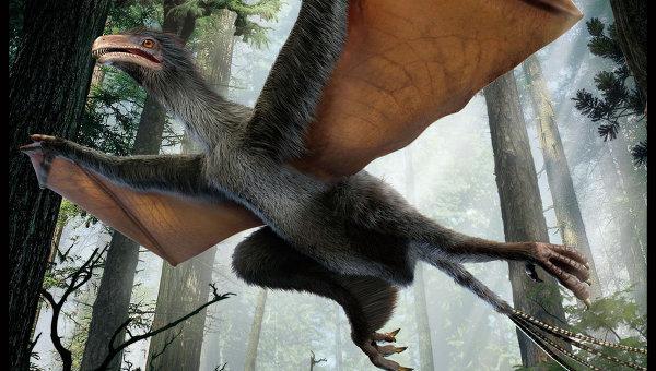 """Палеонтологи нашли в Китае динозавра-""""бэтмена"""" юрского периода"""