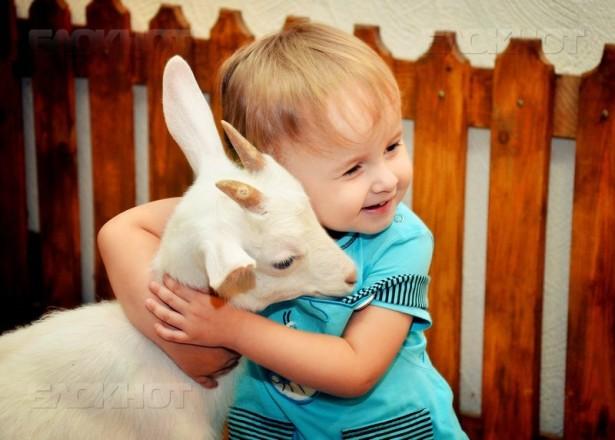 Ставропольцы смогут бесплатно посетить городские контактные зоопарки
