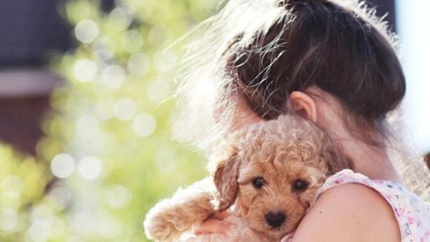 Общение с домашними животными снижает уровень стресса