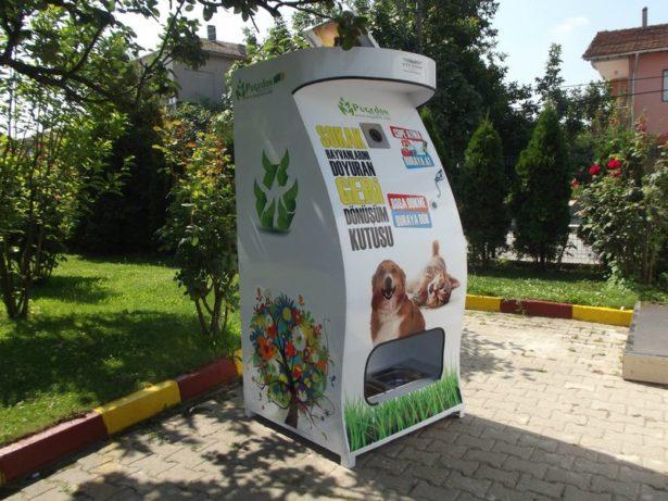 В Магасе установят умные кормушки для бездомных животных